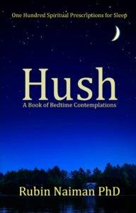 Hush book cover